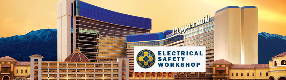 2020 IEEE IAS Electrical Safety Workshop (ESW)