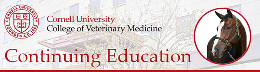 Cornell Hospital for Animals: Managing Joint Injury and Osteoarthritis in Equine Practice