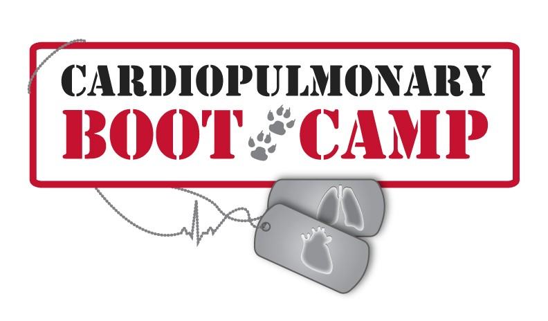 Cardiopulmonary Boot Camp