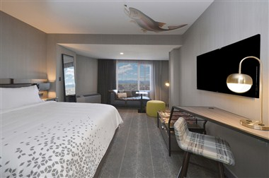 New Renovated Guest Room
