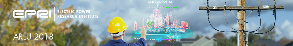 Augmented Reality for Leading-Edge Utilities