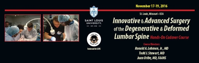Innovative and Advanced Surgery of the Degenerative and Deformed Lumbar Spine