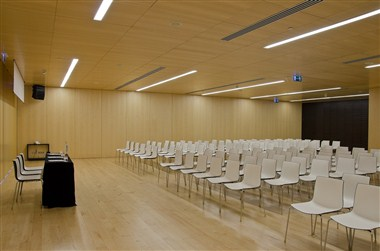 "Meeting Room ""Auditorio"""