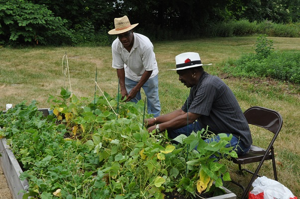 Cultivating Community: Gardens for Good