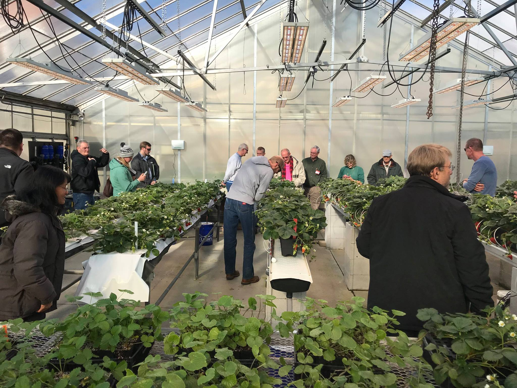 GREENHOUSE MANAGEMENT WORKSHOP