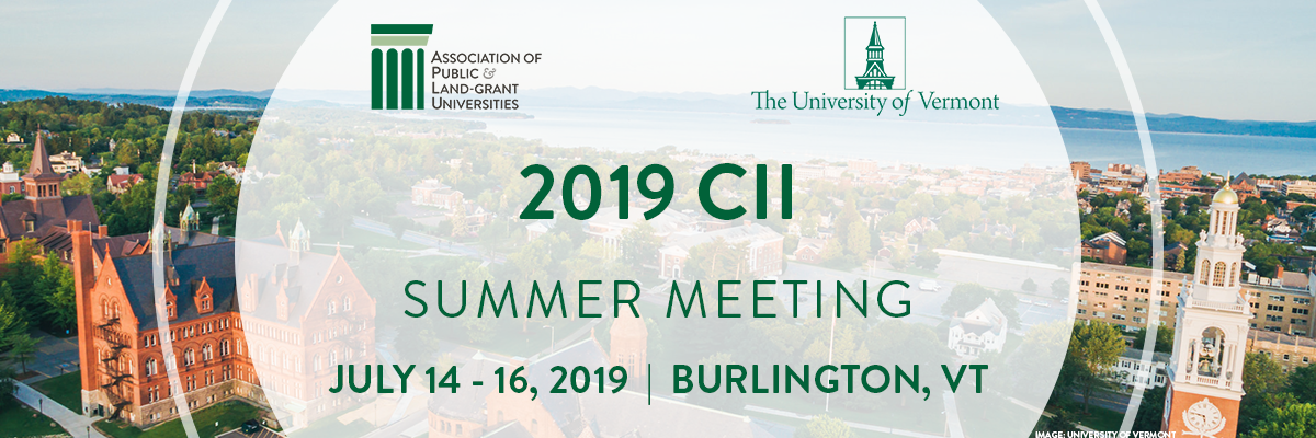 2019 CII Summer Meeting