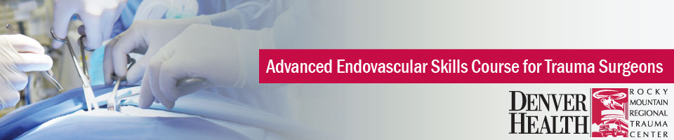 Advanced Endovascular Skills Course for Trauma Surgeons