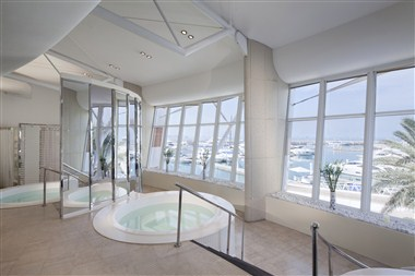 Talise Spa Plunge Pool, Jacuzzi and Steam Room