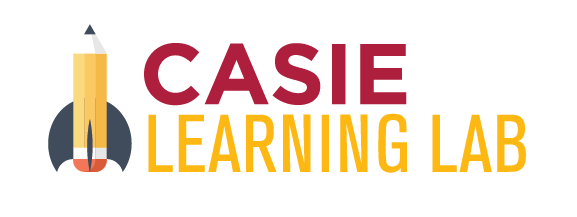 CASIE Learning Lab: Playful learning, playful teaching