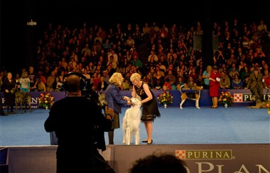 The National Dog Show, Presented by Purina
