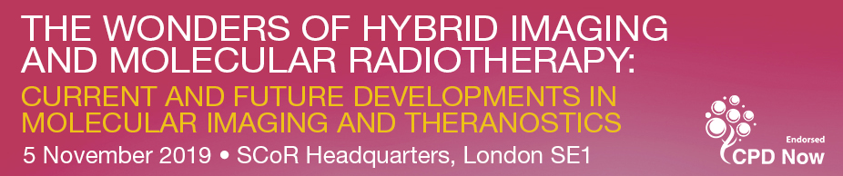 The Wonders of Hybrid Imaging and Molecular Radiotherapy: Current and Future Developments in Molecular Imaging and Theranostics
