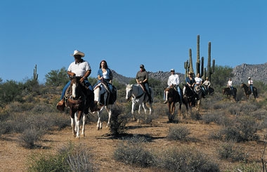 Horseback Riding in the Sonoran Desert