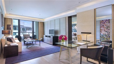 Executive Suite (Living room)