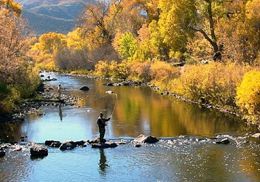 Fall Fly Fishing