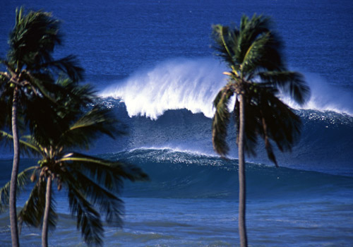 Tres Palmas, Famous Big-Wave Spot in Rincon