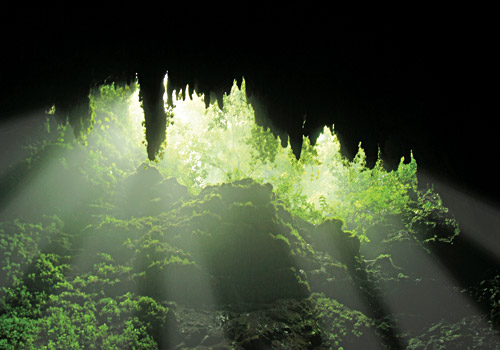 Camuy Caverns at Rio Camuy National Park