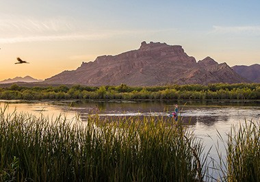 Lower Salt River with stand up paddleboarder