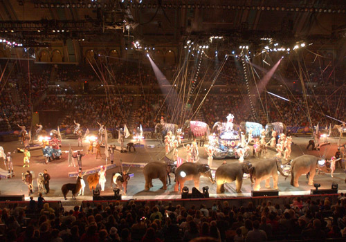 Circus at Atlantic City Boardwalk Hall