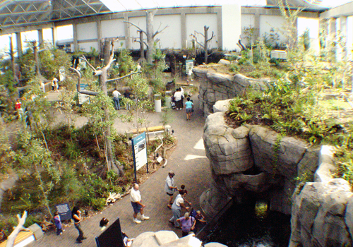 Cape Fear Conservatory at NC Aquarium