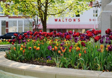 Walton Museum on the Downtown Bentonville Square