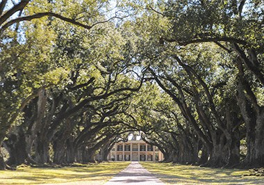 Rosedown Plantation Mansion