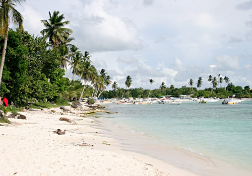 Beach in Isla Saona, Bayahibe, Santo Domingo