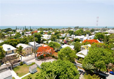 Key West Cityscape