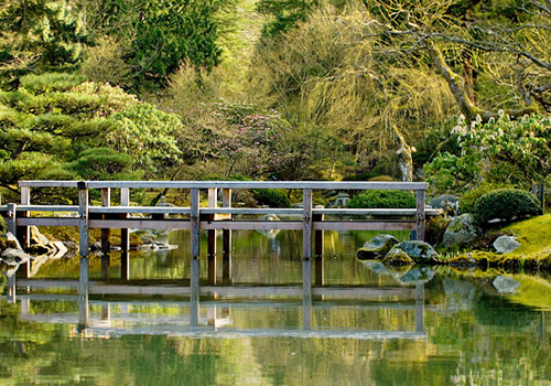 Japanese Garden at Washington Park Arboretum