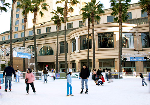 Downtown Ice at the Circle of Palms, San Jose