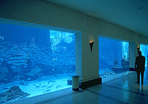 Aquarium at Atlantis