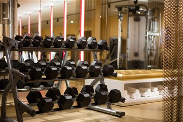 Fitness Center - Dumbbells Set