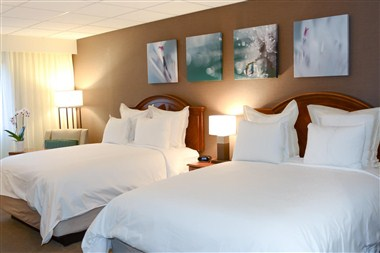 Newly Transformed Guest Rooms