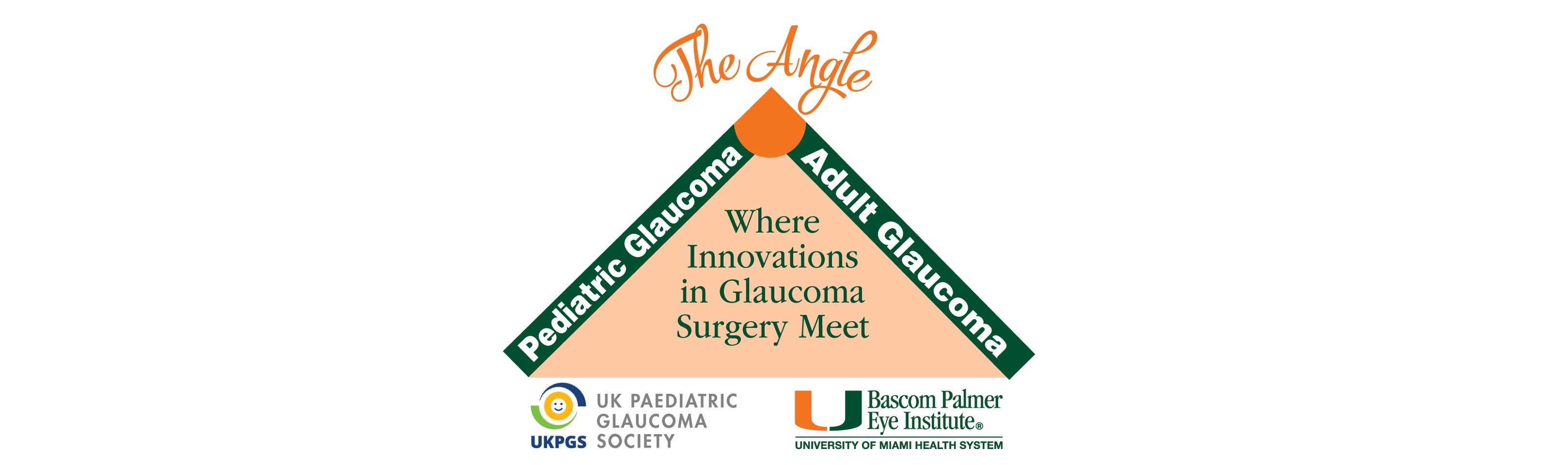 Bascom Palmer 2017 Glaucoma at the Angle: Where Innovations in Glaucoma Surgery Meet: Presented in conjunction with the UK Paediatric Glaucoma Society