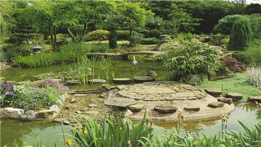 Pure Land Japanese Garden
