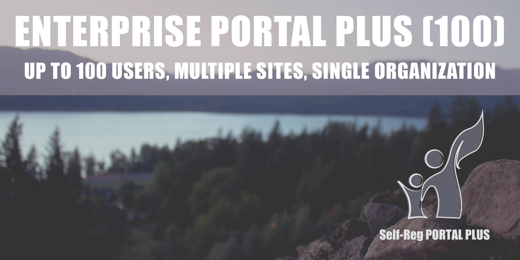 Enterprise Portal Plus (100)