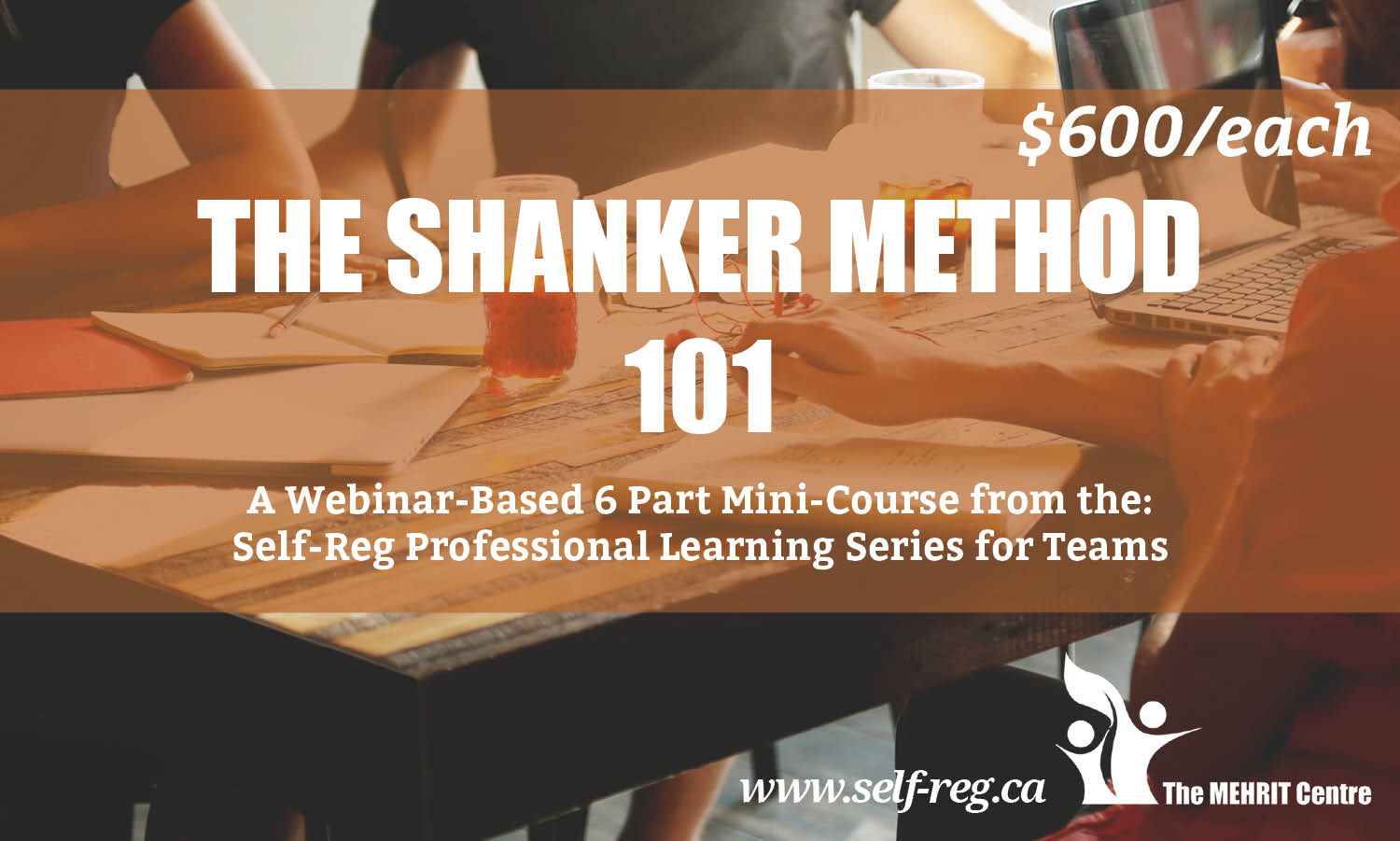 The Shanker Method 101: A Professional Learning Series