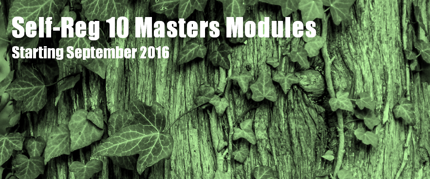 Self-Reg Masters Modules (10-Modules)