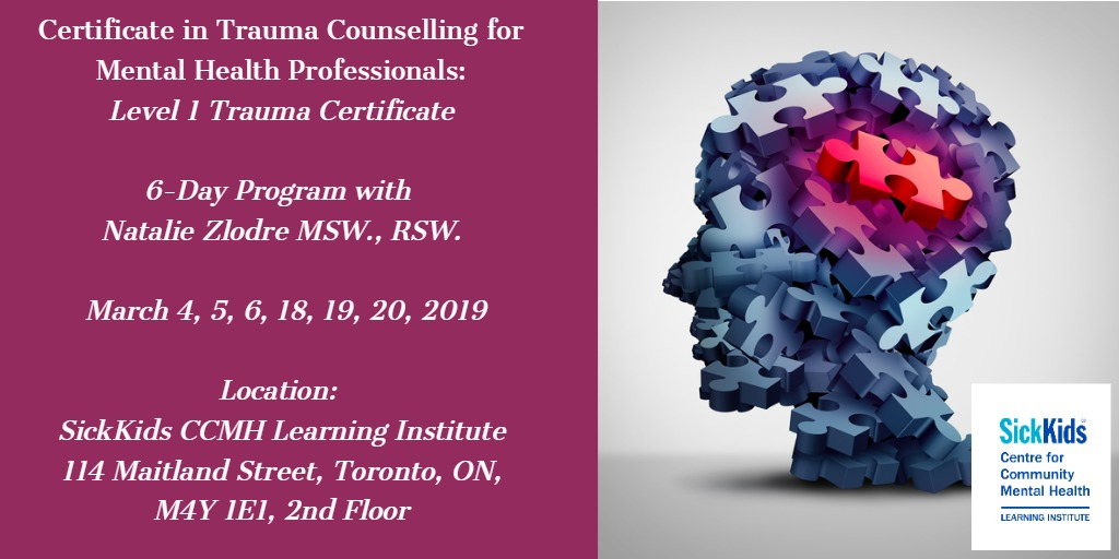 Certificate in Trauma Counselling for Mental Health Professionals (6 day course): Level 1 Trauma Certificate