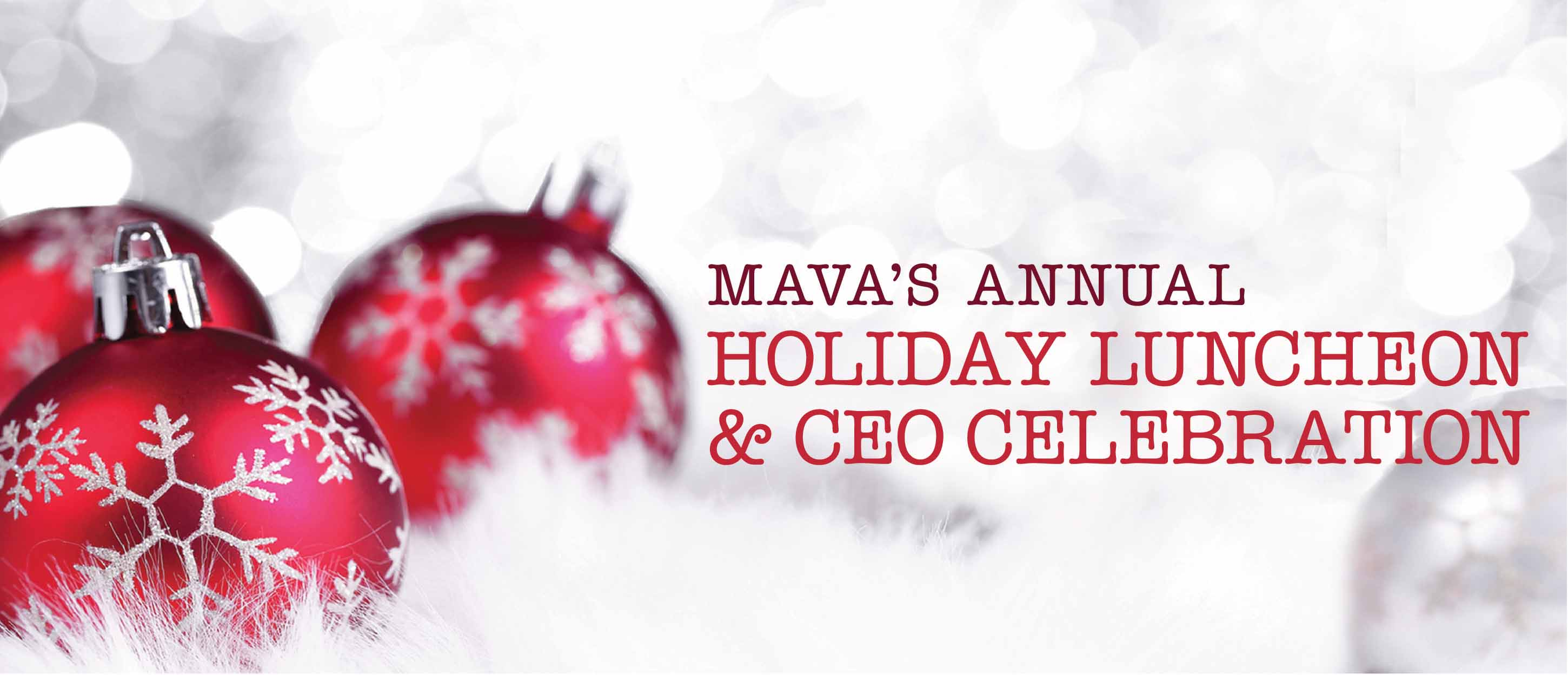 MAVA Holiday Luncheon - Dec 8, 2016