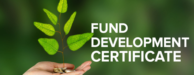 Creating a Sizzling, Executable Fund Development Plan