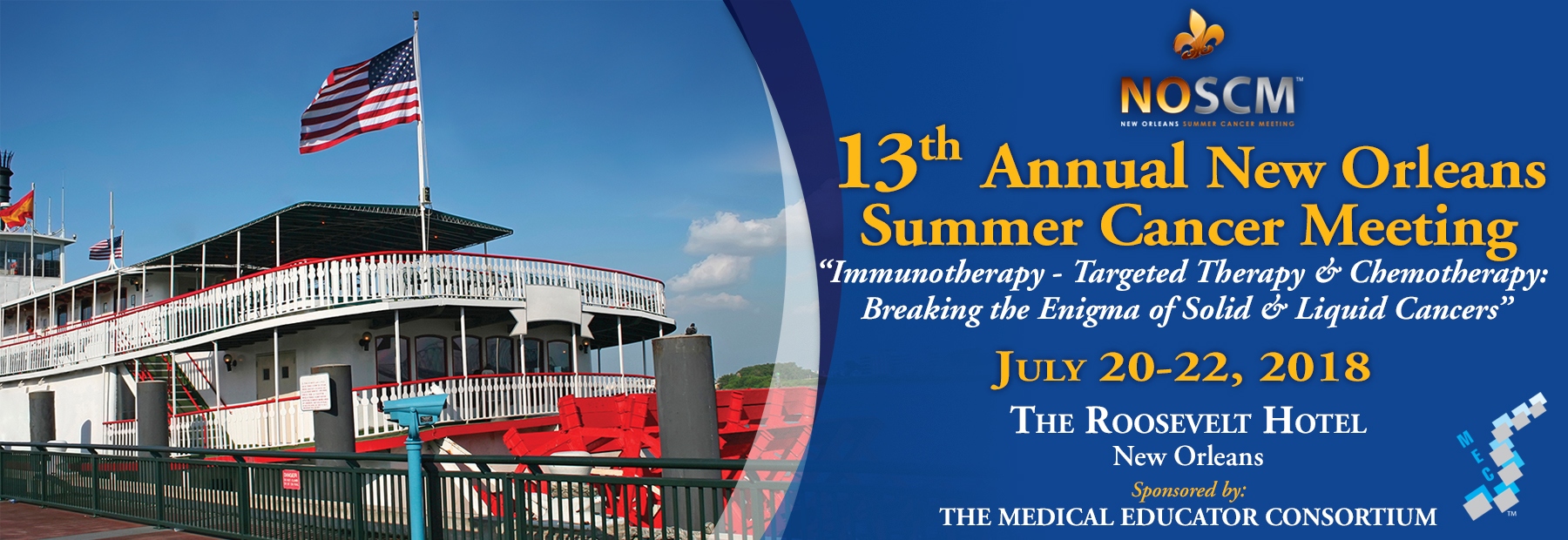 13th Annual New Orleans  Summer Cancer Meeting