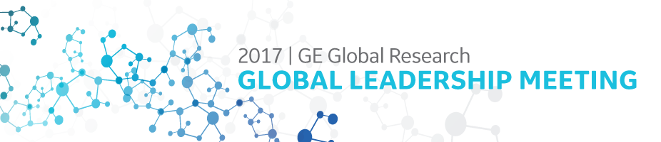 2017 GE Global Research GLM