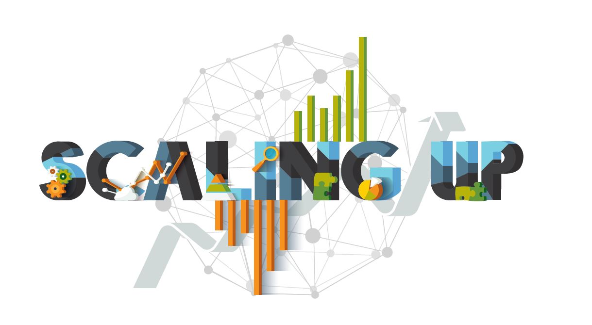 Scaling Up: Institute on Intercultural Learning and Mentoring