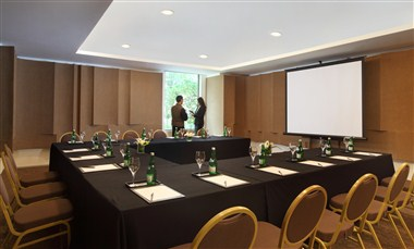 Lotus Meeting room at Mezzanine Level