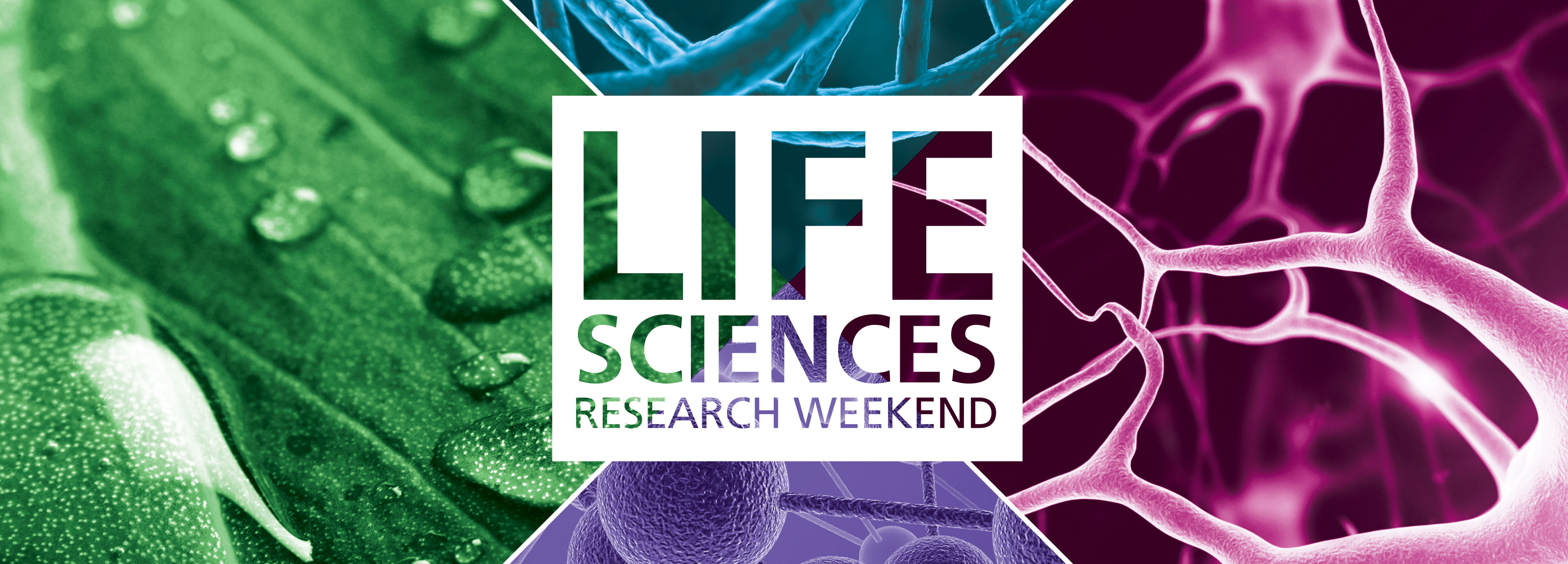 Life Sciences Research Weekend 2016