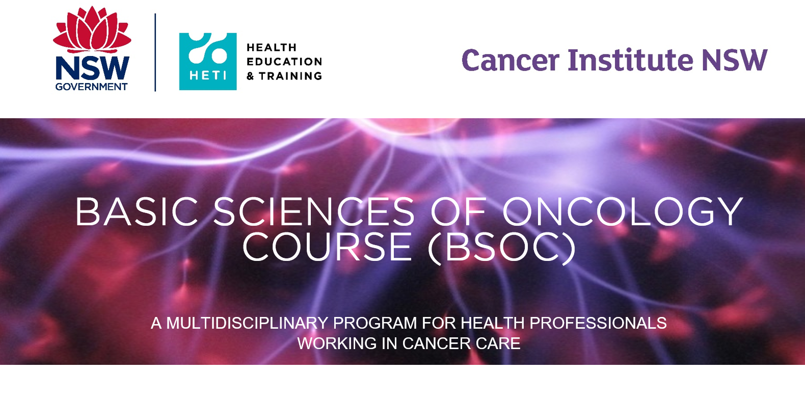 Basic Sciences in Oncology Course (BSOC) 2019