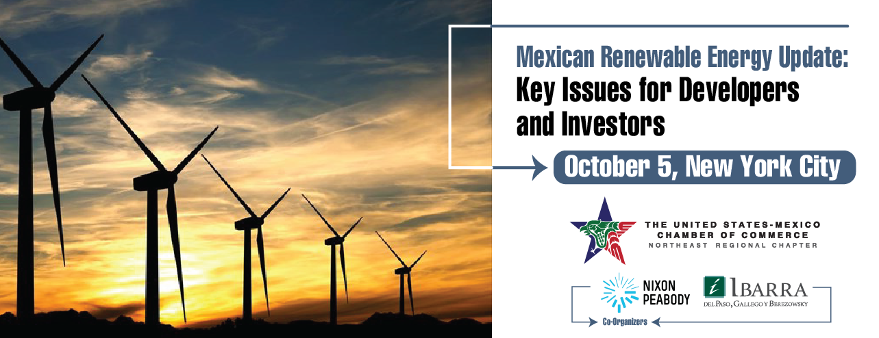 Mexican Renewable Energy Update: Key Issues for Developers and Investors
