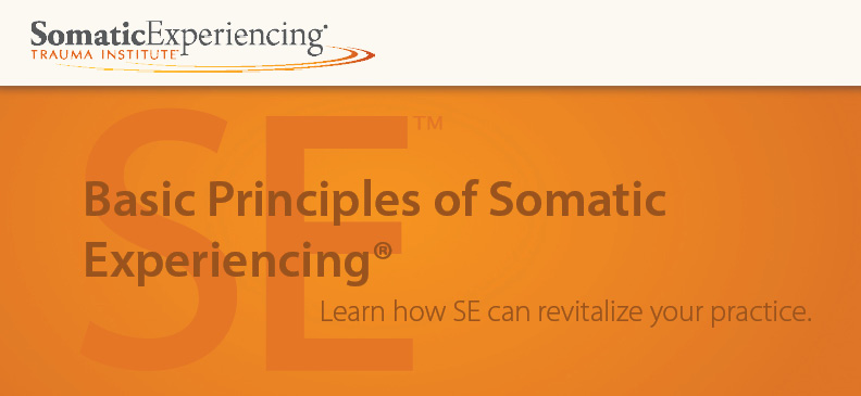 Basic Principles of Somatic Experiencing - Silver Spring, MD - April 21, 2018