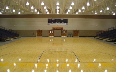 Arena Basketball Floor