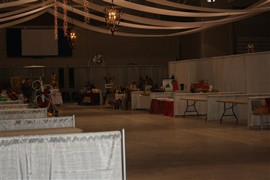Arena Craft Show
